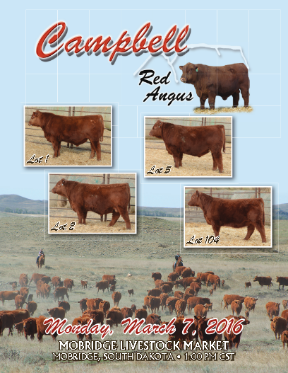 Campbell Red Angus 2016 Sale Catalog