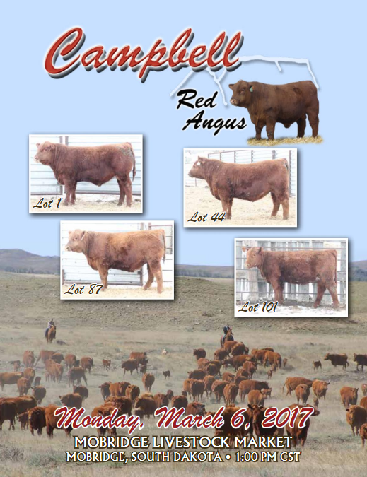 Campbell Red Angus 2017 Sale Catalog